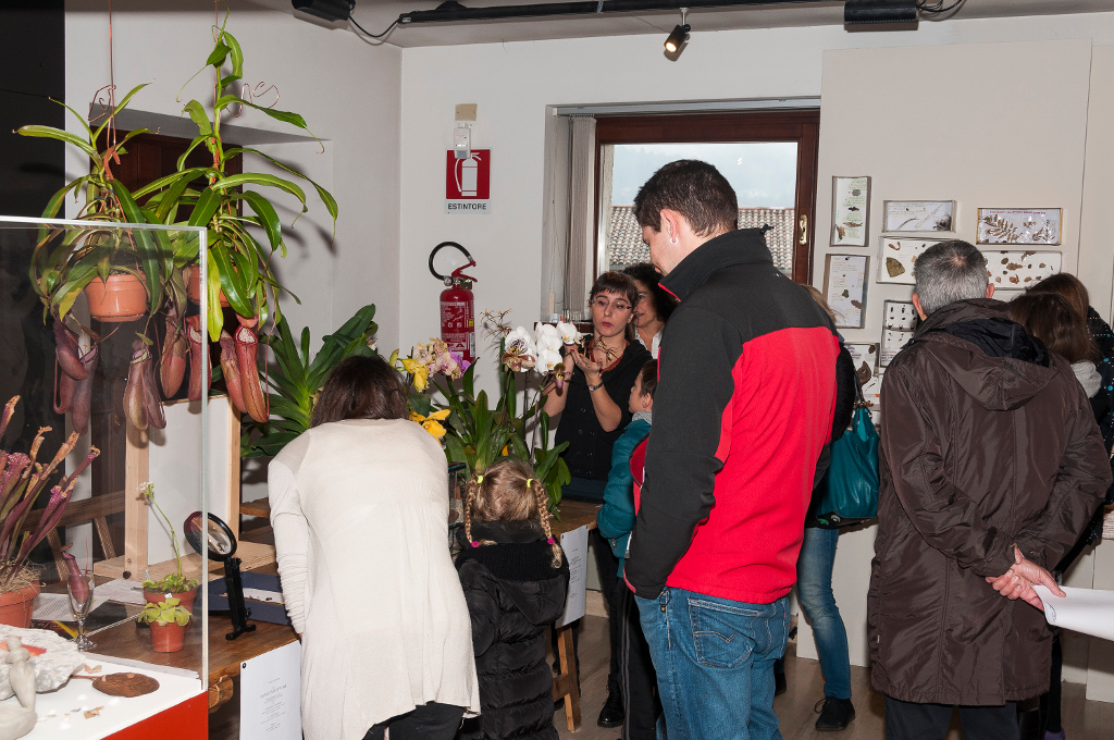 Darwin Day Rovereto 2015 (3)