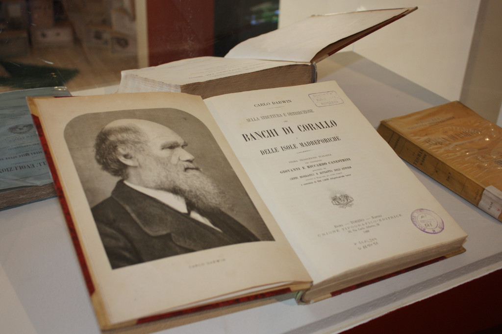 Darwin Day Rovereto 2015 (8)